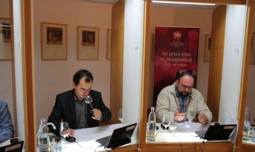 Hodnocení Svatomartinských vín ve Valticích 25.října 2012