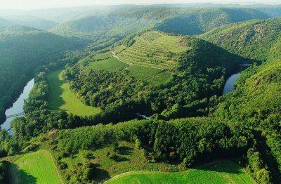 Vinice Šobes v Národním parku Podyjí